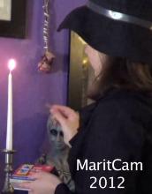 MaritCam